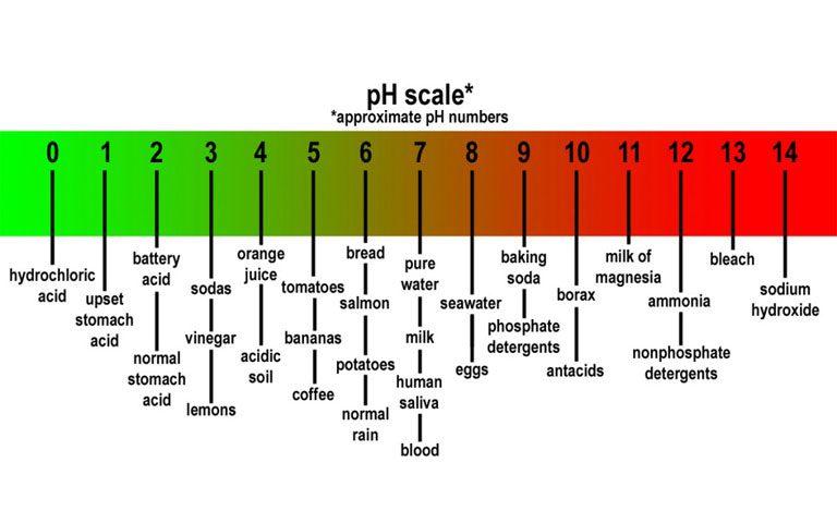 استاندارد ph در مواد غذایی