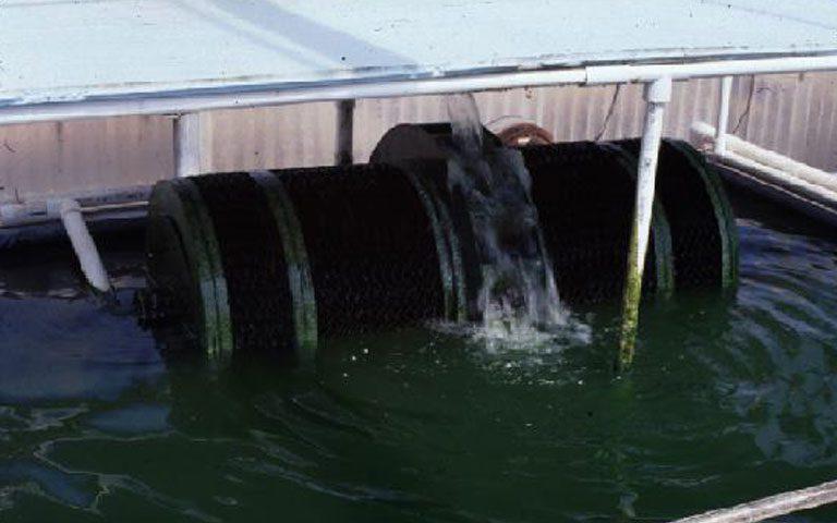 بیوفیلترها در تصفیه آب و فاضلاب